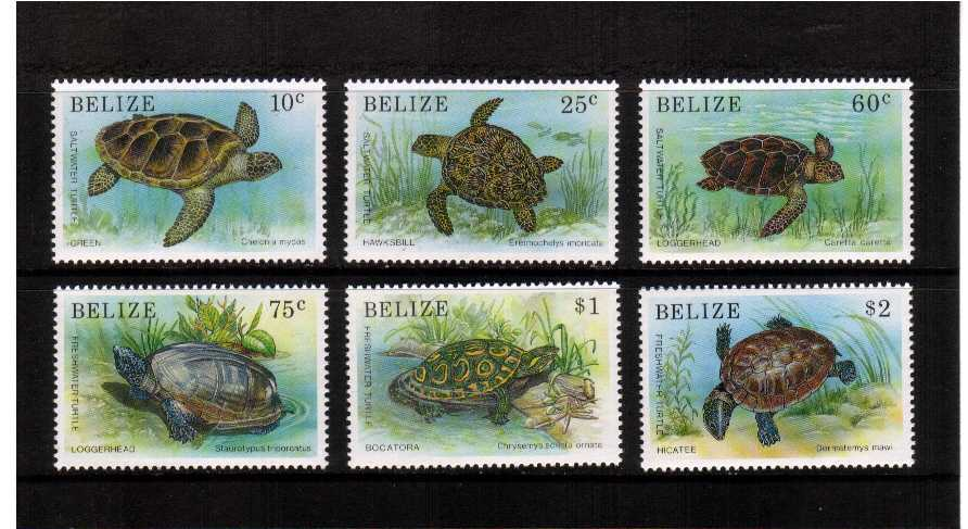 Turtles set of six superb unmounted mint