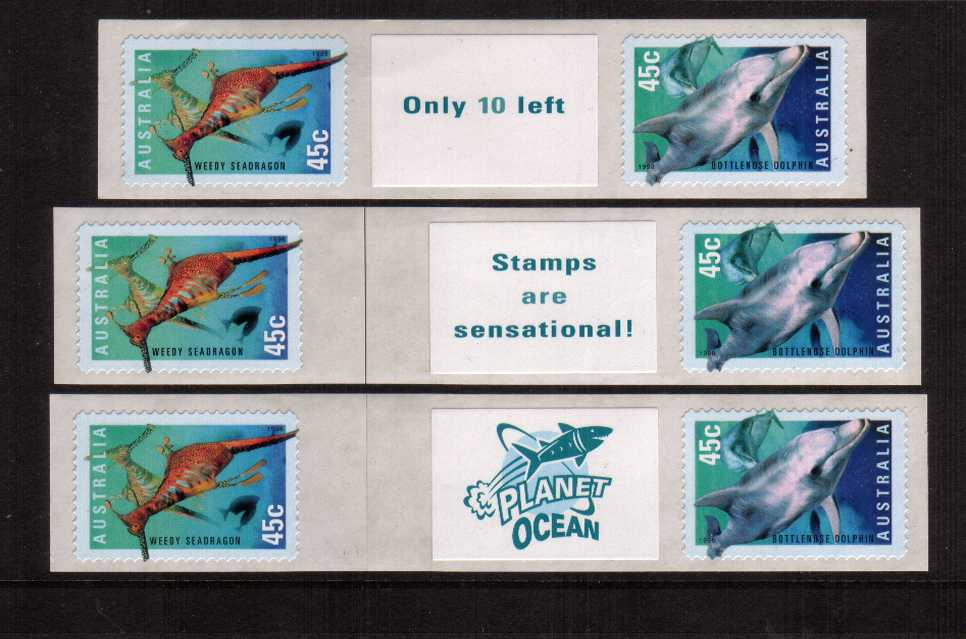 International Year of the Ocean<br/>