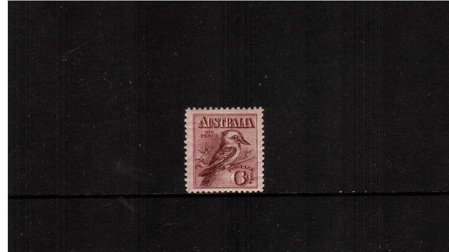 6d Claret - Kookaburra Engaved - No Watermark<br/>A superb unmounted mint ''wide'' single with feint horizonal gum crease.