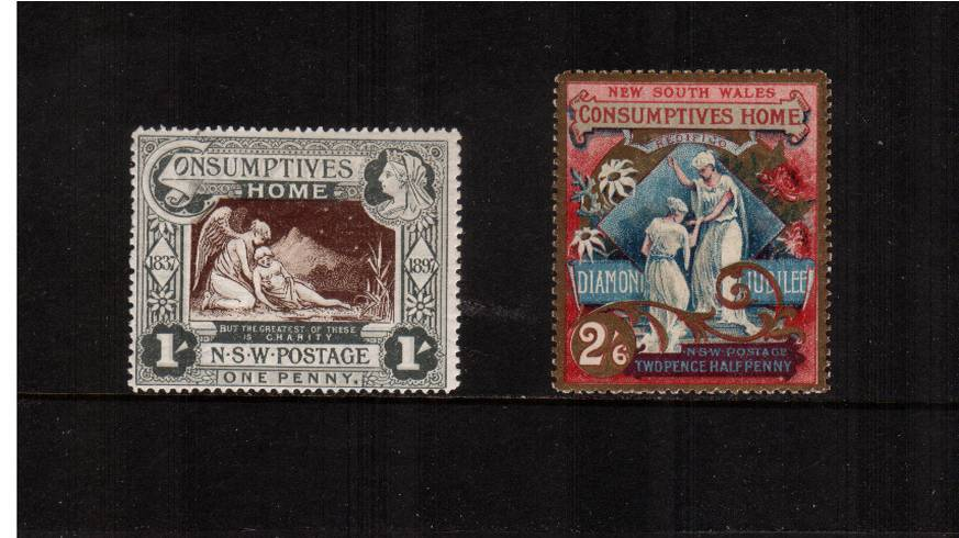 Diamond Jubilee and Hospital Charity<br/>